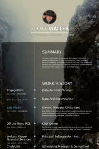 Real CV Examples & Resume Samples   Visual CV Free Samples