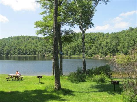 Savoy Mountain State Forest Cabins by Picnic Area