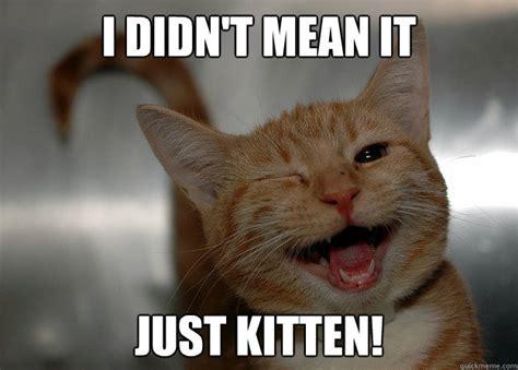 Meme Kitten - kitten memes image memes at relatably com