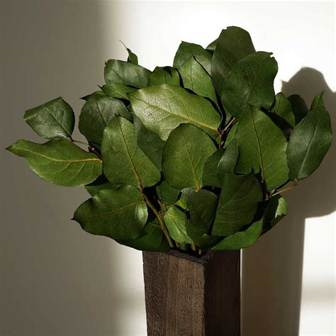 a few scraps leafy branches all over free motion quilting decorative foliage salal leaves