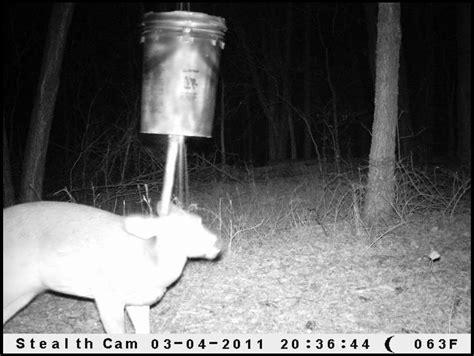 nudge deer feeder plans nudge feeders for deer newhairstylesformen2014 com