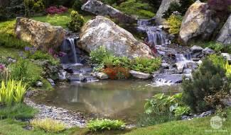 bassin de jardin conseil bassin de jardin