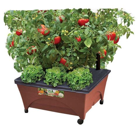 raised garden bed grow box kit watering system rolling