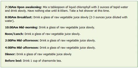 Detox Juice Fasting Plan by My 11 Days Juice Fast Experience And Celebrating An