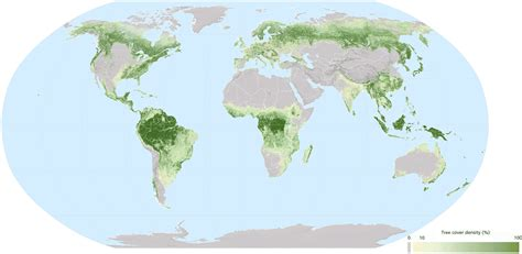 world s forests our world in data