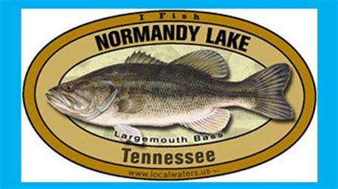 tims ford lake homes for sale tims ford lake normandy lake percy priest lake real