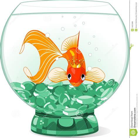cartoon goldfish queen   aquarium stock vector