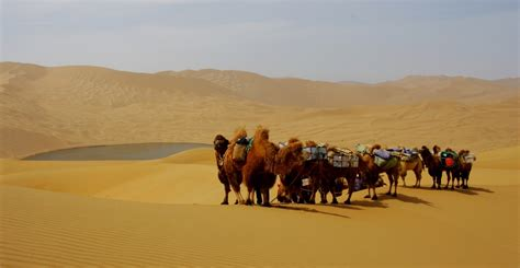 innere mongolei die innere mongolei w 252 ste grasland und dschingis khan