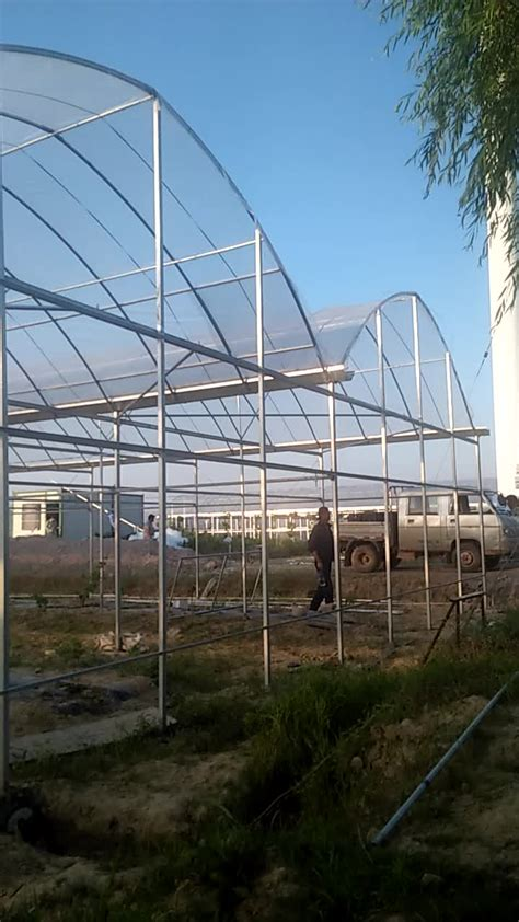 Big Greenhouses by Agriculture Plastic Large Multi Span Greenhouse For Sale
