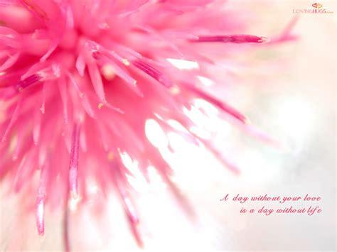 On Lovely by Wallpaper 28180331 Fanpop