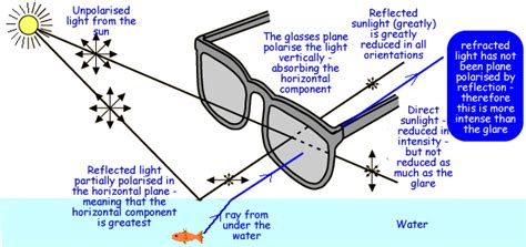 what does polarized light see better hunt and fish better fin and field
