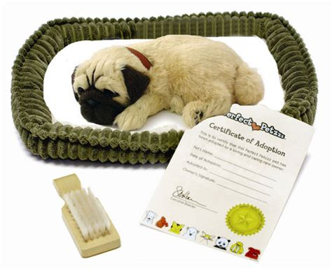 petzzz pug petzzz pug 43 with new softer shopgadgetsandgizmos