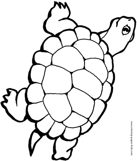 happy turtle coloring page free coloring pages of happy birthday turtle