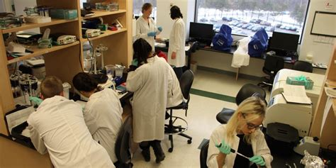 Telfer Mba Placements by Tmm Open House On March 2 Translational And Molecular