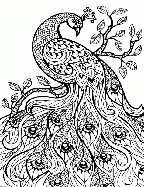 coloring book birds and flowers stress relief coloring book garden designs mandalas animals florals and paisley patterns books best 25 colouring pages ideas on