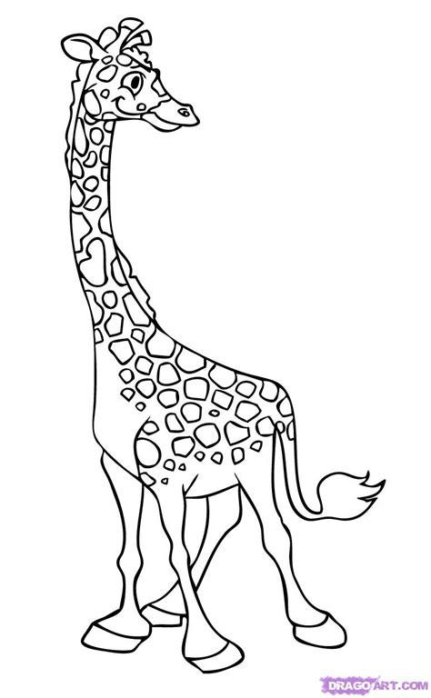 art tutorial line art giraffe line drawing cliparts co