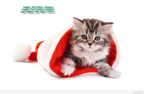 new year animals for happy new year animals wishes pictures