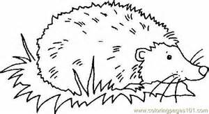 hedgehog coloring pages coloring pages hedgehog mammals gt hedgehogs free