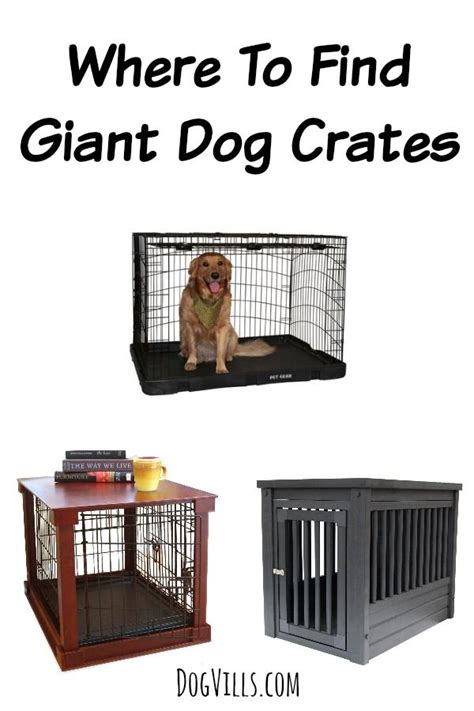 large breed crates 991 best images about houses large dogs on luxury house for dogs
