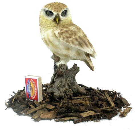 little owl resin garden ornament 163 14 24 garden4less