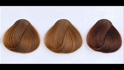 types of browns for hair color what are different shades of mocha hair color youtube