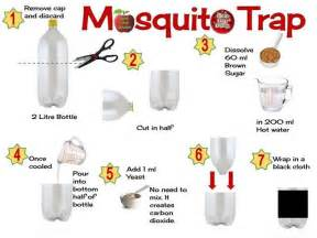 20 best ideas about mosquito trap on