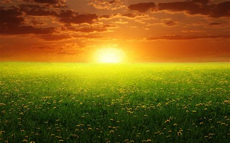 Dream Nature With Sunset Backgrounds For Powerpoint Nature Ppt Templates Nature Powerpoint Templates Free