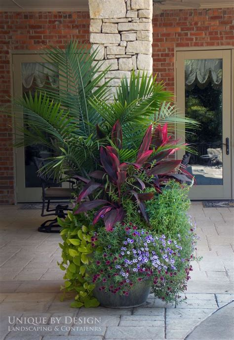 container gardening florida 17 best ideas about tropical garden design on