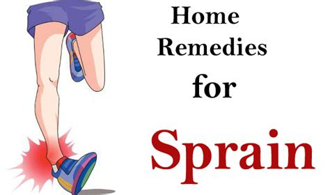 Home Remedies For Gnats by How To Get Rid Of Gnats