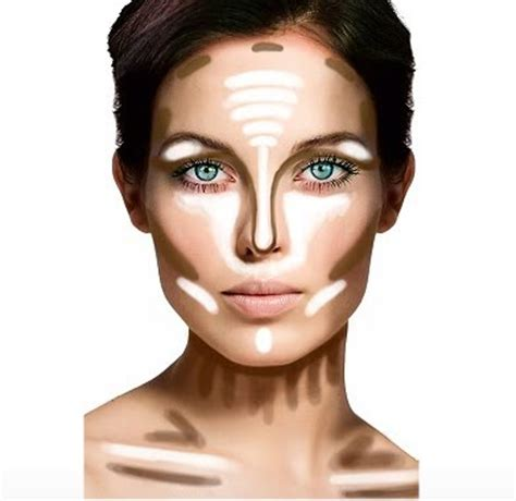 contour diagram how to highlight and contour with makeup and products