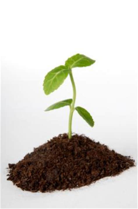 facts  soil lovetoknow