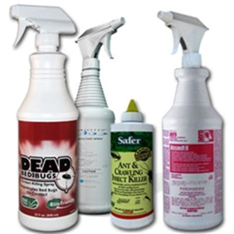How To Treat Bed Bugs Yourself by Bed Bug Treatment According To The Experts Cure Skin