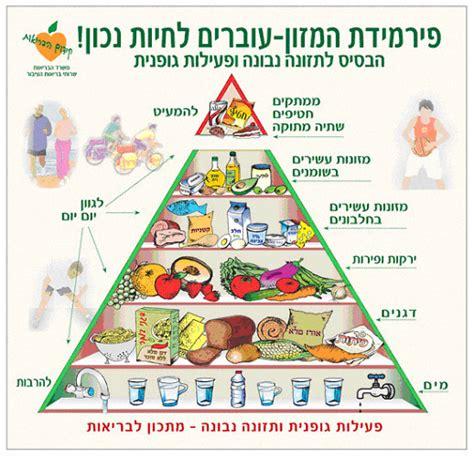 التغذية الصحية وزارة الصحه