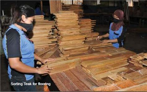 SF Resources: Flying the flag for Indonesian wood in