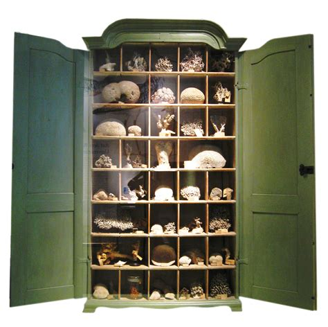 Cabinet Of Curiosities opinions on cabinet of curiosities