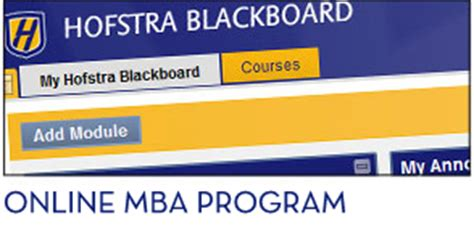 Best Mba Programs New York Area by Top Ranked Mba Program Hofstra New York