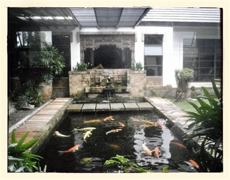 fish pond inside the house house outside pinterest