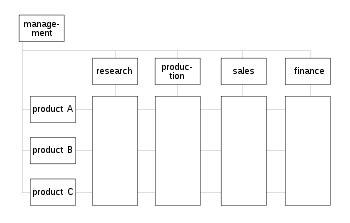 matrix management wikipedia