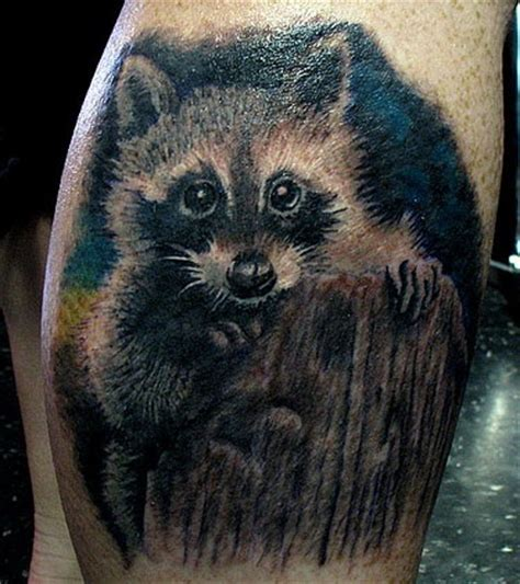coon tattoo raccoon coon raccoon