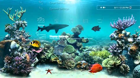 microsoft live themes aquarium dynamic ps3 theme youtube
