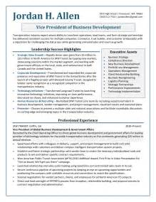 young professional resume template 5