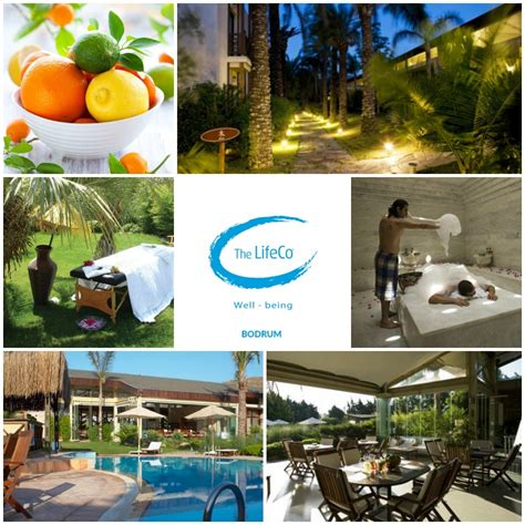 Lifeco Bodrum Well Being Detox Center by Lifeco Bodrum Detox Center Spas In Turkey
