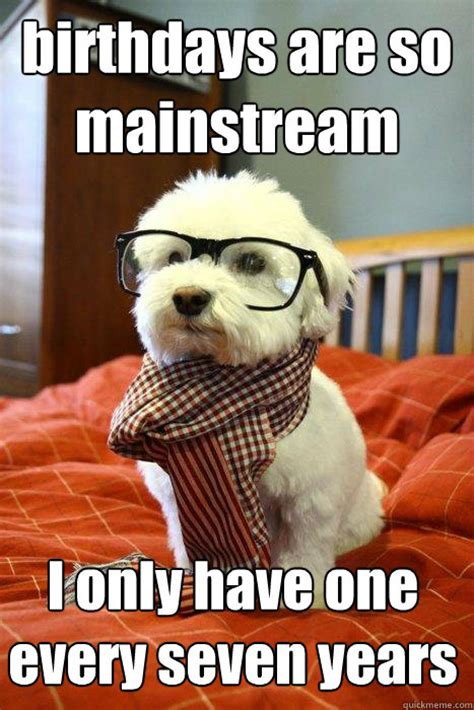 Hipster Dog Meme - birthday funny dog memes