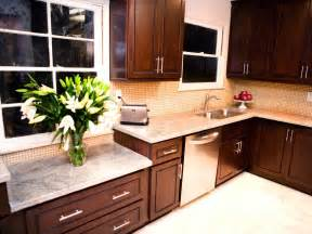 light brown kitchen cabinet color contemporary kitchen with dark brown cabinets dark wood cabinets