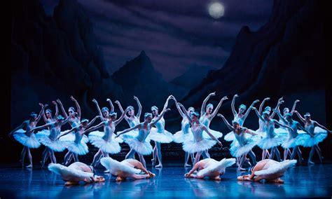 dance of the swans australian ballet s swan lake indaily