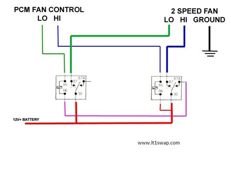 derale fan wiring diagram get free image about wiring