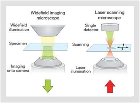 adaptive optics for biomedical microscopy | optics