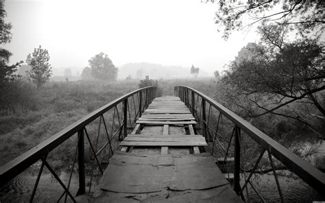 black and white nature wallpaper color black and white landscapes nature trees bridges