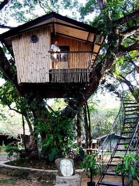 house design for adults pin by riggs 1 on a 6 tree houses