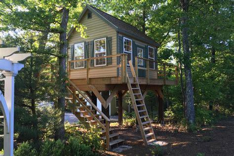 life   trees build  treehouse shed sheds